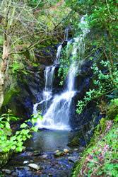 The Quarry Falls