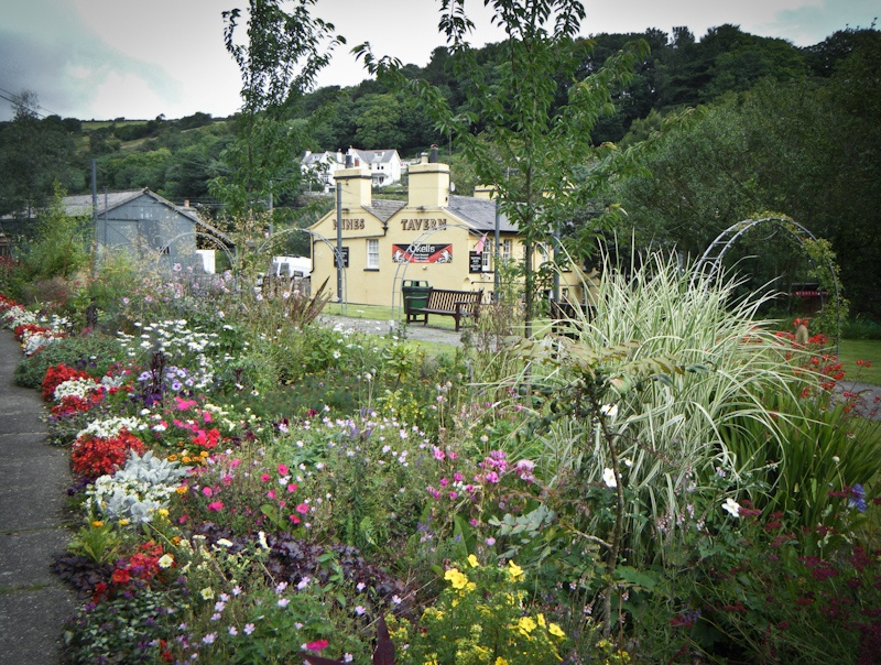 Laxey Rose Gardens 3