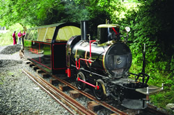 2-laxey-mines-train